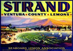 Oxnard Ventura County The Strand Lemon Citrus Fruit Crate Label Art Print Vintage Labels, Vintage Postcards, Vintage Ads, Vintage Travel, Vintage Stuff, Ventura County, Ventura California, Oxnard California, California Beach