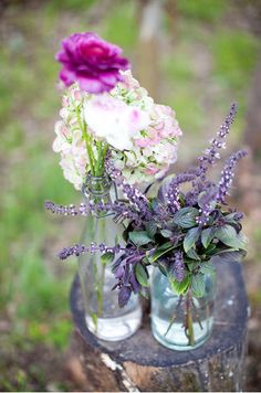 pink, violet flowers