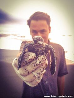 Volunteer with baby leatherback