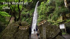 Japan Guide, Gifu, Waterfall, Outdoor, Outdoors, Waterfalls, Outdoor Games, The Great Outdoors