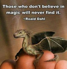 Baby Dragon with quote: believe in magic