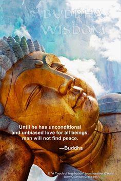 """""""Hasta que no tenga amor incondicional e imparcial para todos los seres, el hombre no encontrará paz."""" – Siddharta Gautama, el Buda"""