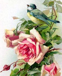 Free clipart,pattern and backgrounds,Art images,Textile digital prints,Decoupage. Flower Images, Flower Pictures, Flower Art, Etiquette Vintage, 2 Clipart, Rosa Rose, Arte Floral, Bird Art, Botanical Prints