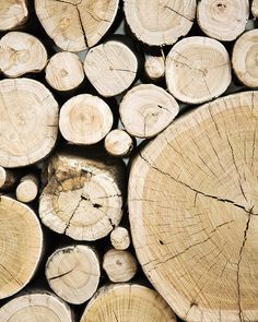Your trusted firewood and tree service company in the Minneapolis area | www.ronstreeserviceandfirewood.com | #trees