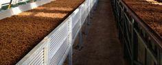 Un proyecto para la mejorar las tierras con fertlizante organico.