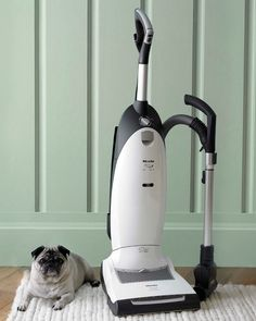 Miele Dynamic U1 Cat & Dog Vacuum. Miele Vacuums at Avenue Appliance Store in Edmonton, Alberta.