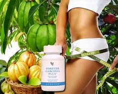 Fat Fighting Weapon! Forever Garcinia Plus® is a revolutionary dietary supplement, containing ingredients that may aid in weight loss. The primary ingredient is Garcinia Cambogia. Garcinia works by inhibiting the enzyme (citrate liase) which converts calories into fat. As a result, the body will burn existing fat stores, thus aiding in weight loss. https://shop.foreverliving.com/retail/shop/shopping.do?itemCode=071&task=viewProductDetail