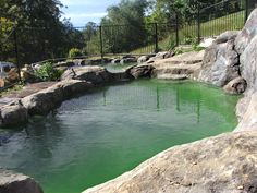 Natural swimming pool in Bellingen NSW Natural Pools, Community Events, South Wales, Countries Of The World, Ponds, Dream Homes, The Locals, Swimming Pools, Places To Go