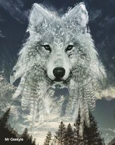 Native American Wolf, Native American Pictures, Native American Artwork, American Indian Art, Wolf Images, Wolf Photos, Wolf Pictures, Fantasy Wolf, Dark Fantasy Art