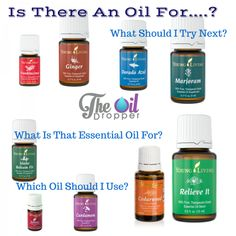 Wondering where to go next with your oil collection? This is an index of all (mostly all) of my blog posts. Come over and take a peak! www.theoildropper.com/essential-must-haves/