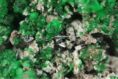 Vergasovaite, Cu3O[(Mo,S)O4][SO4], Euchlorine,  Yadovitaya fumarole, Second scoria cone, Northern Breakthrough, Great Fissure eruption, Tolbachik volcano, Kamchatka Oblast', Far-Eastern Region, Russia. Brown prisms of Vergasovaite on green Euchlorine. Fov 3 mm. Copyright © Stephan Wolfsried 5/2016