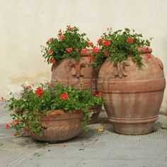 elegant classic tuscan terracotta plant containers with geranium flowers on italian terrace Europe Stock Photo