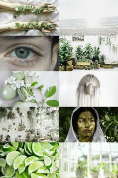 skogsrån : birth month aesthetics - may