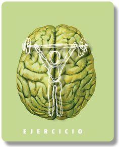 Un cerebro sano | Reportajes | MG Magazine