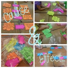 """Teaching cause and effect using, """"Click, Clack, Moo"""" and a collaborative group project! The kids were so engaged!"""