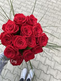 Kvety Eny Rose, Flowers, Plants, Pink, Roses, Flora, Plant, Royal Icing Flowers, Flower