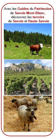 Des visites dégustations, des démonstrations, rencontres avec producteurs... sont organisées régulièrement à la découverte des terroirs de Savoie et Haute-Savoie. Renseignez-vous ! Guide, Animals, Mont Blanc, Fine Dining, Animales, Animaux, Animal, Animais