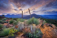 The Pound: This photograph showcasing Mt Ohlssen in the Flinders Ranges in South Australia...