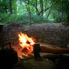 Camp all sorted for this weekends Introduction to Bushcraft course. I think it's going to be amazing yet a bit wet!!! #bushcraft #bushcraftskills #bushcraftcourse #woodsman #nature #oxford #oxfordshire #beautiful #woodland #outdoors #relax #peaceful #survival