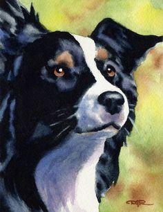 BORDER COLLIE Dog Art Print Signed by Artist DJ by k9artgallery