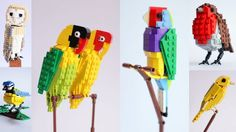 Lego Bird Series - -he needs support to make these an official Lego product!