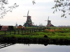 60 Interesting Facts About Netherlands - The Netherlands