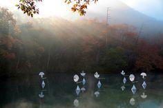 Breathing Earth – Susumu Shingu's Dream by Thomas Riedelsheimer – OEN Joel Shapiro, Environmental Challenges, Museum Architecture, Wise Person, Fluxus, Kinetic Art, Portraits, Japanese Artists, Film Director