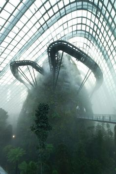 gardens by the bay, singapore - cloud forest. unforgettable experience