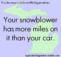 you are from michgian - Google Search