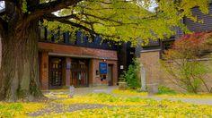 フランク ロイド ライトの自宅兼スタジオ どの含み 家屋 と 秋色
