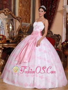 Pretty Light Pink Quinceanera Dress Spaghetti Straps Organza Embroidery Ball Gown