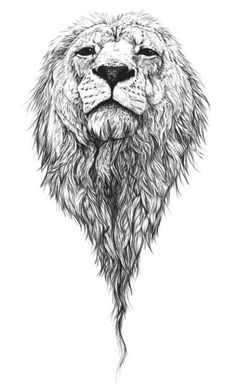 Lion for me= loyalty, strength, resilience...I don't know why?