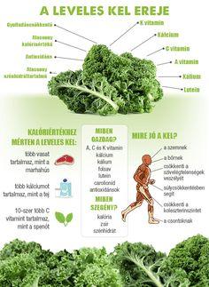 Megérkezett a fodros kel por! Wellness Tips, Health And Wellness, Health Diet, Health Fitness, Health Care, Healthy Mind And Body, Health And Beauty, Natural Remedies, Herbalism