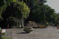 jardim botânico do recife - 2016