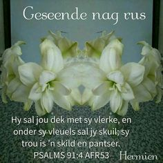 Night Quotes, Morning Quotes, Sleep Tight Quotes, Good Evening Wishes, Goeie Nag, Afrikaans Quotes, Special Quotes, Day Wishes, Good Night