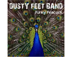 FUNKY PEACOCK  Dusty Feet Band  Music mp3