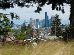 Seattle, Nahrungswald