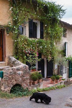 Cotignac, Provence | Flickr - Photo Sharing!