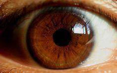 Super photo.  Marron qui tire vers le jaune.  Et vers le doré (au milieu). Et vers le vert (à l'extérieur de l'iris).