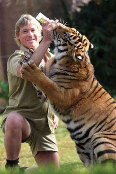 The wonderful Steve Irwin