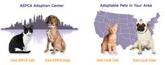 ASPCA Adoption page  -Another resource to find your next pet