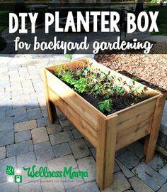 DIY Planter Box for Backyard Gardening