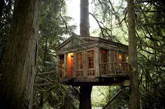 Treehouse Point. Issaquah, WA.