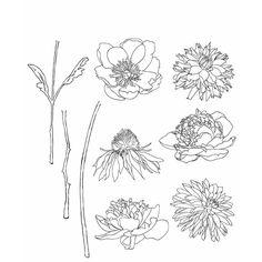 Tim Holtz Cling Stamps, Flower Garden