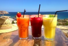 Spring 2014 | Detox and Juice Fasting Retreat | Portuga […]