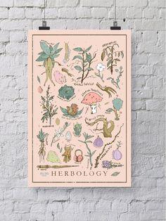 Harry Potter Herbology Print / Plakat - 12 x 18 Wandkunst - illustrierte Hogwarts Klasse Print / home und Wand-Dekor / Muggel