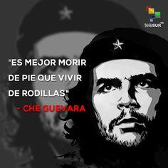 """Ernesto """"Che"""" Guevara es uno de los lideres más destacados de todos los tiempos. El argentino-cubano resaltó por múltiples facetas que lo llevaron a ser uno de los revolucionarios más importantes, con un legado perenne. Che Guevara Quotes, Pawan Kalyan Wallpapers, Ernesto Che Guevara, Mexican Revolution, Power To The People, People Quotes, Strong Women, Life Quotes, 17th Birthday"""