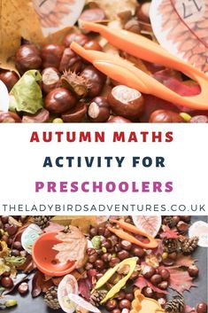 Are you looking for preschool math activities? Click through for my autumn fun preschool maths activity that uses seasonal nature for a fun preschool activity. Post includes printable maths resource to help with number recognition. Numbers Preschool, Preschool Curriculum, Toddler Preschool, Maths Fun, Toddler Activities, Preschool Activities, Nature Activities, Preschool Class, Preschool Worksheets