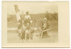 RPPC Real Photo Postcard CHILDREN on Cart Pulled by GREAT DANE DOGS SMOKING CUTE
