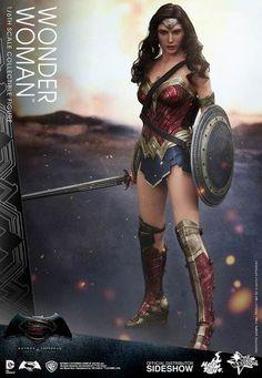 Hot Toys Wonder Woman Sixth Scale Figure Batman v Superman Dawn of Justice